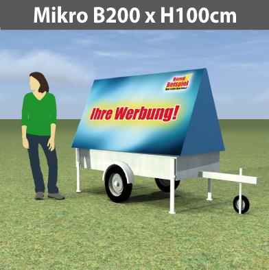 micro_100x200